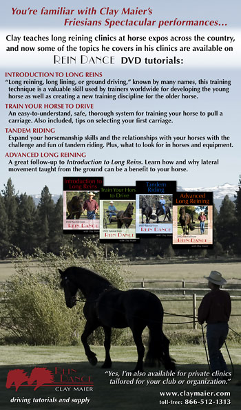 Equine Journal DVD tutorials